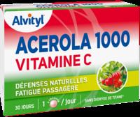 Govital Acerola 1000 à MIRANDE