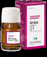 Lehning Arnica Complexe N° 1 Solution Buvable En Gouttes Fl/30ml à MIRANDE
