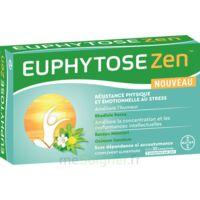 Euphytosezen Comprimés B/30 à MIRANDE