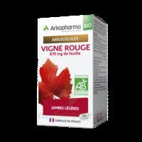 Arkogélules Vigne Rouge Bio Gélules Fl/45 à MIRANDE