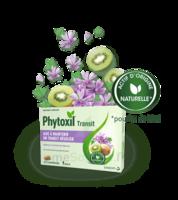 Phytoxil Transit Comprimés B/20 à MIRANDE