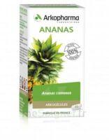 Arkogélules Ananas Gélules Fl/45 à MIRANDE