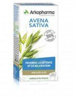 Arkogélules Avena Sativa Gélules Fl/45