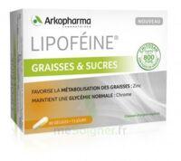Lipofeine Graisse Et Sucres Gélules B/60 à MIRANDE