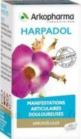 Arkogelules Harpagophyton Gélules Fl/150 à MIRANDE