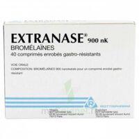 Extranase 900 Nk, Comprimé Enrobé Gastro-résistant à MIRANDE