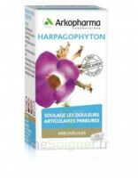 Arkogelules Harpagophyton Gélules Fl/45 à MIRANDE