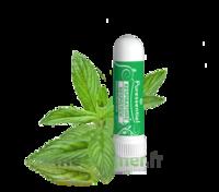 Puressentiel Respiratoire Inhaleur Respiratoire Aux 19 Huiles Essentielles - 1 Ml à MIRANDE