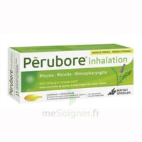 Perubore Caps Inhalation Par Vapeur Inhalation Plq/15 à MIRANDE