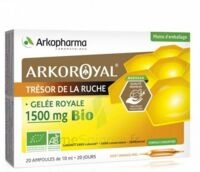Arkoroyal Gelée Royale Bio 1500 Mg Solution Buvable 20 Ampoules/10ml à MIRANDE