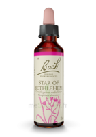 Fleurs De Bach® Original Star Of Bethlehem - 20 Ml à MIRANDE