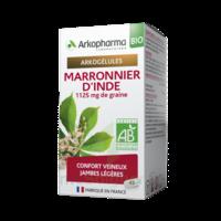 Arkogélules Marronnier D'inde Bio Gélules Fl/45 à MIRANDE